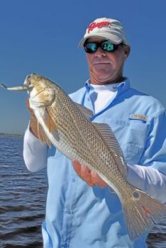 The heat along North Carolina's central coast doesn't slow down red drum too much.