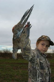 The SCDNR offers a handful of special youth dove hunts across the state.