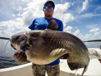 Zakk Royce landed this 90-pound blue catfish on Aug. 10.