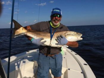 Catch your fish of a lifetime in the pamlico sound for Louisiana lifetime hunting and fishing license