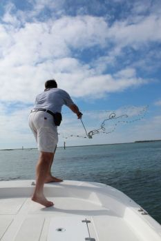 Shrimp baiting season open in South Carolina waters tomorrow, Sept. 9., and biologists say it should be a very good year.