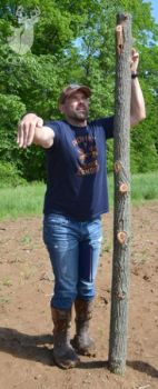 """Lee Lakosky erects a """"fake"""" rubbed tree to attract the attention of wandering bucks."""