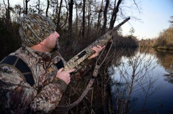 Wood ducks lead the field of waterfowl making their presence felt in the Carolinas in November.
