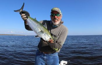 False albacore aren't a mainstay at the Georgetown jetties, but they've shown up lately and are biting topwater plugs and soft plastics under popping corks.