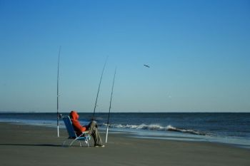Bull reds show up in the surf off Pawleys Island this month, well within casting range of most fishermen armed with surf rods.