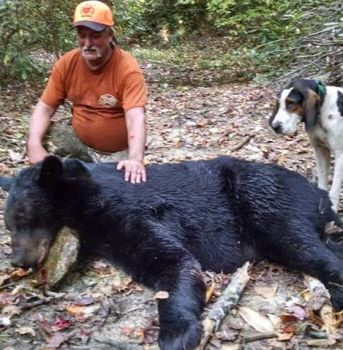 Ralph Medlin killed the biggest bear – this 372 pounder – of the 2016 Mountain Unit bear season.