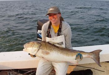 Redfish make up the largest percent of fish tagged by SCDNR and its volunteers.