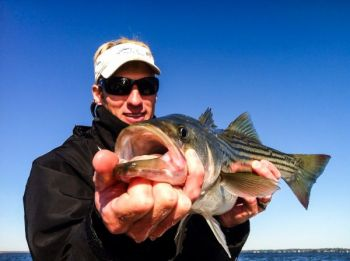 Guide Mitchell Blake said winter stripers congregate around clam beds and stump fields in North Carolina's Albemarle Sound.