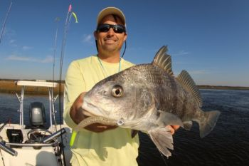 Black drum are active through December in deep holes in inshore creeks. Key on areas close to structure.