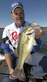 A jerkbait fished along rocky banks that get plenty of sunshine is a great tool to catch bass at Lake Hickory in December.