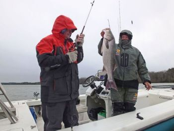 Heavy tackle is required to battle the big stripers that swim in Lake Russell's 26,650 acres.