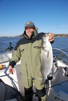 Winter striper fishing is great this month on South Carolina's Lake Murray.