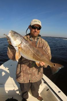 Redfish, especially bulls, are one of the main species that use jetties as winter feeding spots.