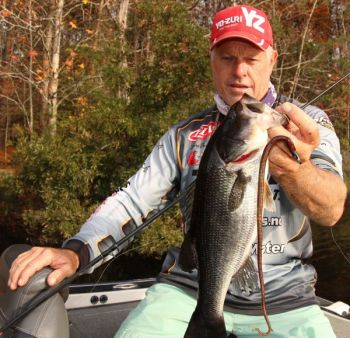 Marc Deschenes of V.I.P. Adventures said winter is a great time to sink brush piles for bass.