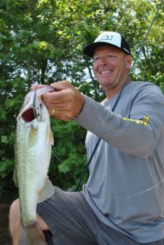 A lipless crankbait is a great search bait for prespawn bass because it can be fished in a variety of ways.