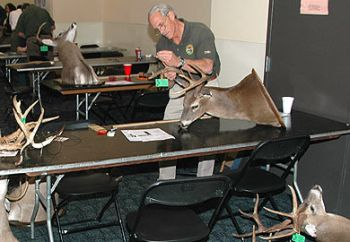 Antler scoring sessions will take place throughout South Carolina during the month of March.