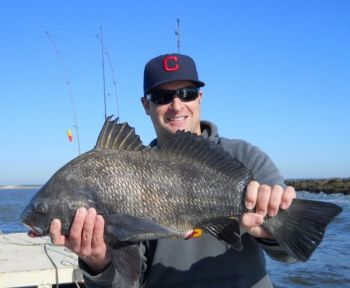 Black drum move back into Little River Inlet and inshore marsh areas this month when the water begins to warm.