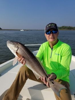 A great fishery for bull reds has developed in Charleston Harbor over the past several springs.