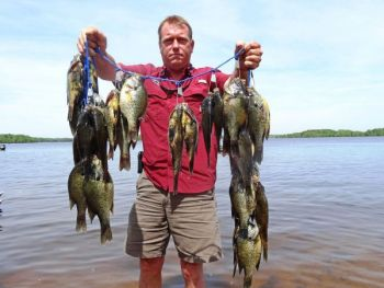 Lake Marion produced this great stringer of shellcrackers for William Scott and fishing buddy Hilton Fulmer.