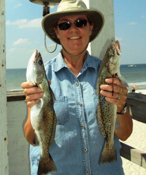 Anglers can get a good box of trout from the decks of Carolina fishing piers.
