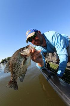Keeping your bait fresh and lively is one key to catching crappie, especially in hot weather.