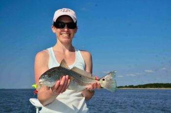 The marshes around Georgetown, S.C., will fill up with hungry spot-tail bass during June.