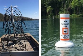 The NCWRC has added 200 fish attractors to Mountain Island Lake.