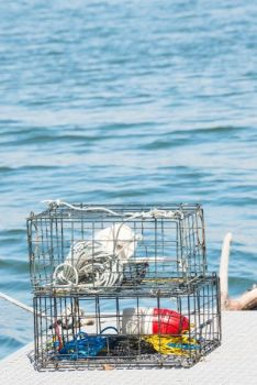 Crab pots, always adorned with floating buoys, are a dead giveaway for good tarpon-fishing spots in Pamlico Sound.