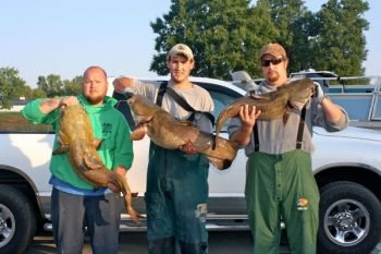 Fishermen in the NC Cats Tournament Series catch plenty of big flathead catfish in summer night tournaments on High Rock Lake.