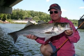 Guide Wendell Wilson said big stripers are a good possibility at either end of Lake Russell — with very little action in between.