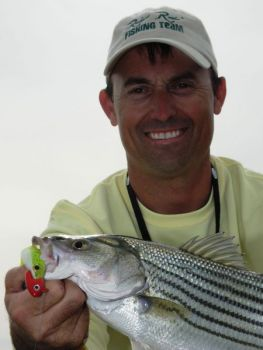 Bills to adjust creel and size limits for striped bass are bottled up in the state legislature.