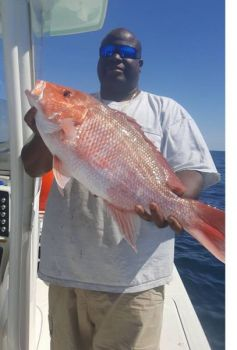 Fisheries managers expect anglers in South Atlantic states to have at least a short red snapper season in 2018.