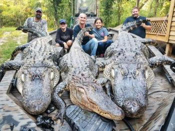 Amy and Jason Kirkland were hunting with Buck Koon on Santee when all three hunters filled their gator tags on opening day.