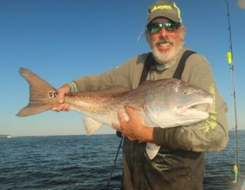 Capt. Rod Thomas, a/k/a Capt. Ponytail poses with a bull redfish he caught on a popping cork/swimbait combo in Winyah Bay.
