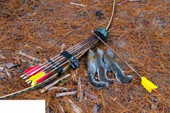 A long-bow and arrows with small-game points is an alternative for squirrel hunters.