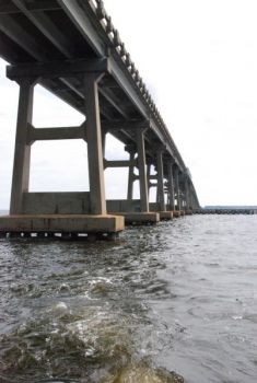 The pilings that support the two US 64 bridges that link the mainland with Roanoke Island, N.C., attract plenty of stripers in the winter.