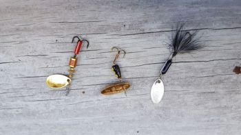 Three of the more popular spinners for trout are: (left to right) Mepps Aglia, Panther Martin and Ward's Rooster Tail. Other effective spinning lures are Blue Fox, Thomas, Acme and Joe's Flies.