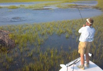 Redfish will pull up on flats and tail on high water, even during the early spring.