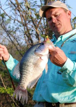 Pony head jigs like this Road Runner account for a lot of crappie, especially in stained water where the small spinner provides vibration and flash.