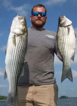 Guide Brad Sasser runs into a lot of mixed schools of striped bass (left) and hybrid bass on April trips to Clarks Hill Lake.