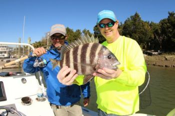 The author caught this nice spring sheepshead.