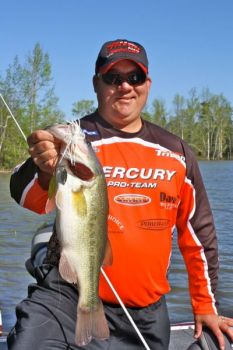Bass pro Tim Grein of Winston-Salem, N.C., caught this Kerr Lake lunker on a spinnerbait in flooded shoreline cover.