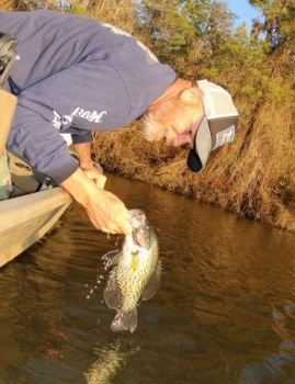 Guide Todd Vick said crappie fishing on the Waccamaw River can be excellent in April.