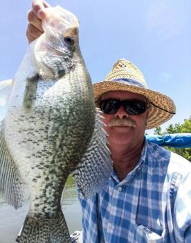Floating boat docks will yield a lot of big crappie to Kerr Lake fishermen in May after the spawn and before fish reach summer holding areas.