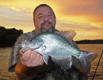 Crappie fishing at night is a great option for Carolina anglers.