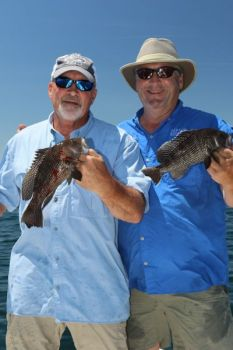 North Carolina's black sea bass fishery is split into two sections -- one south of Cape Hatteras and another one north of Cape Hatteras.