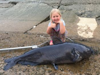Lindsey Edge, 6-years-old, of Laurel Hill, NC, caught this 71-pound blue catfish on the Pee Dee River at the base of the Blewett Falls Dam.