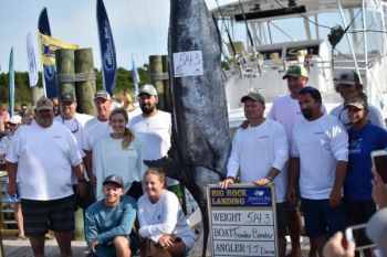 Fender Bender brought this blue marlin to the scales on the final day of the 2018 Big Rock Blue Marlin Tournament.