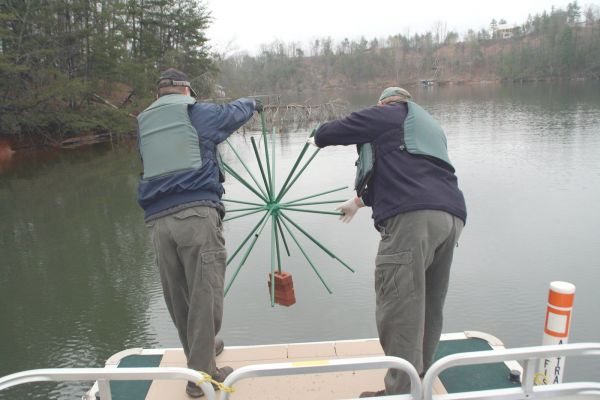 Wrc adds fish attractors to western n c lakes for Porcupine fish attractor