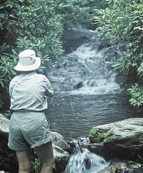 Best spot on the trout map carolina sportsman content la for Best trout fishing in nc